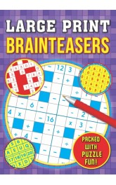 Large Print Brainteasers