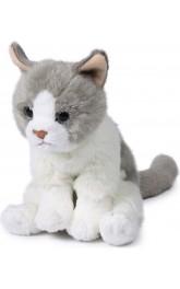 6'' Plush Cats mixed