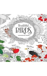 Beautiful Birds-Adult Colouring Book