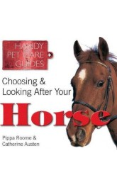 Choosing and looking after your horse