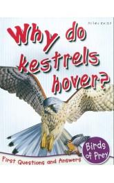 Why do kestrels hover?